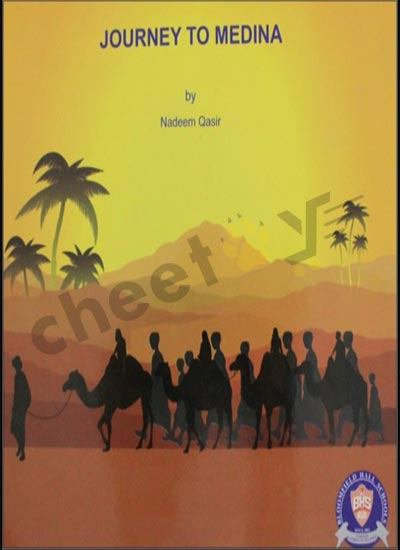 Journey to Medina